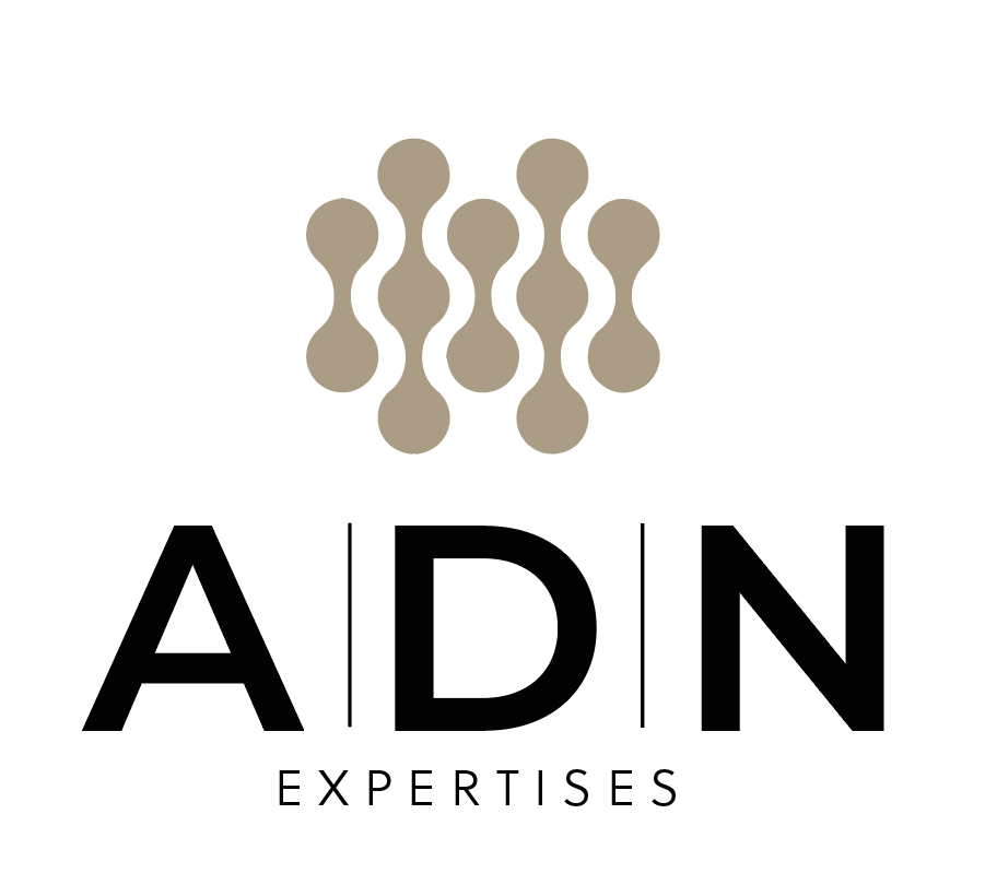 logo ADN Expertises creation Little Big Idea